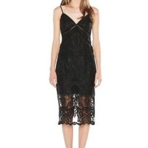 Bardot Black Lace Overlay Dress